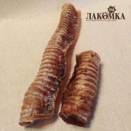 Трахея говяжья / трубки по 15-50 см / продажа на вес